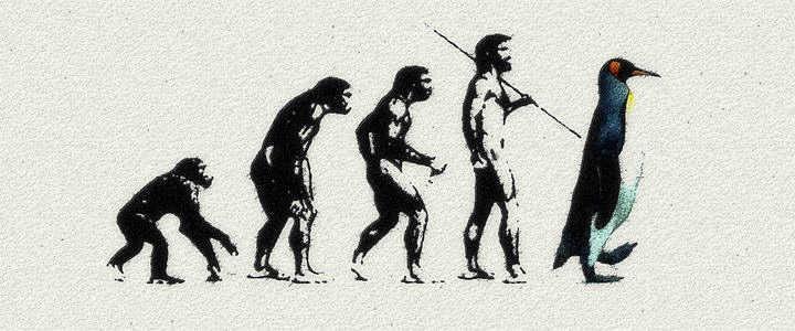 Linux-evolution3