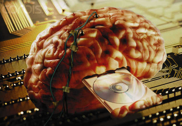 Brain Wired Information --- Image by © Image Source/Corbis
